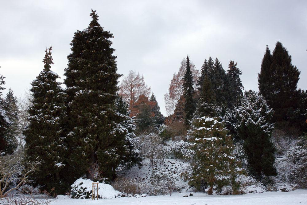 Winterimpressionen Kassel
