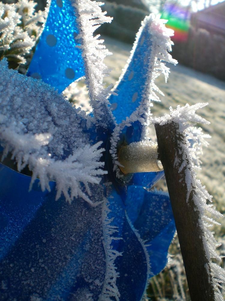Winterimpressions (: