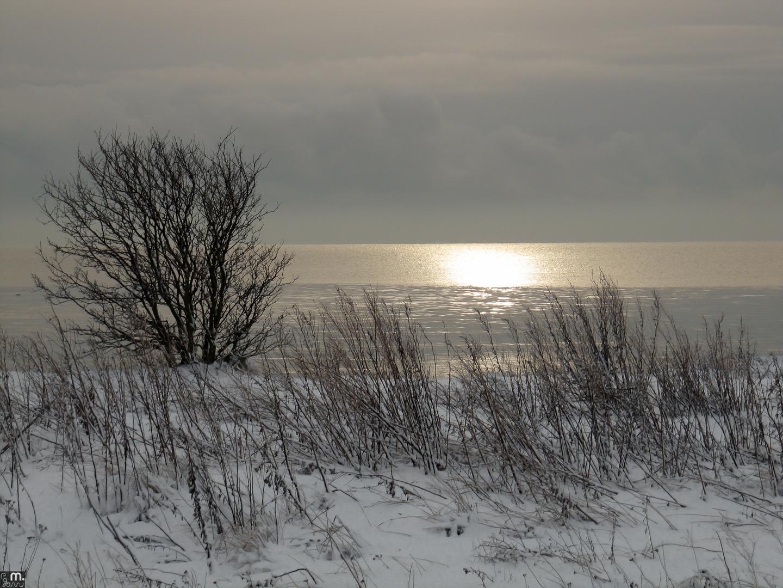 Winterküste