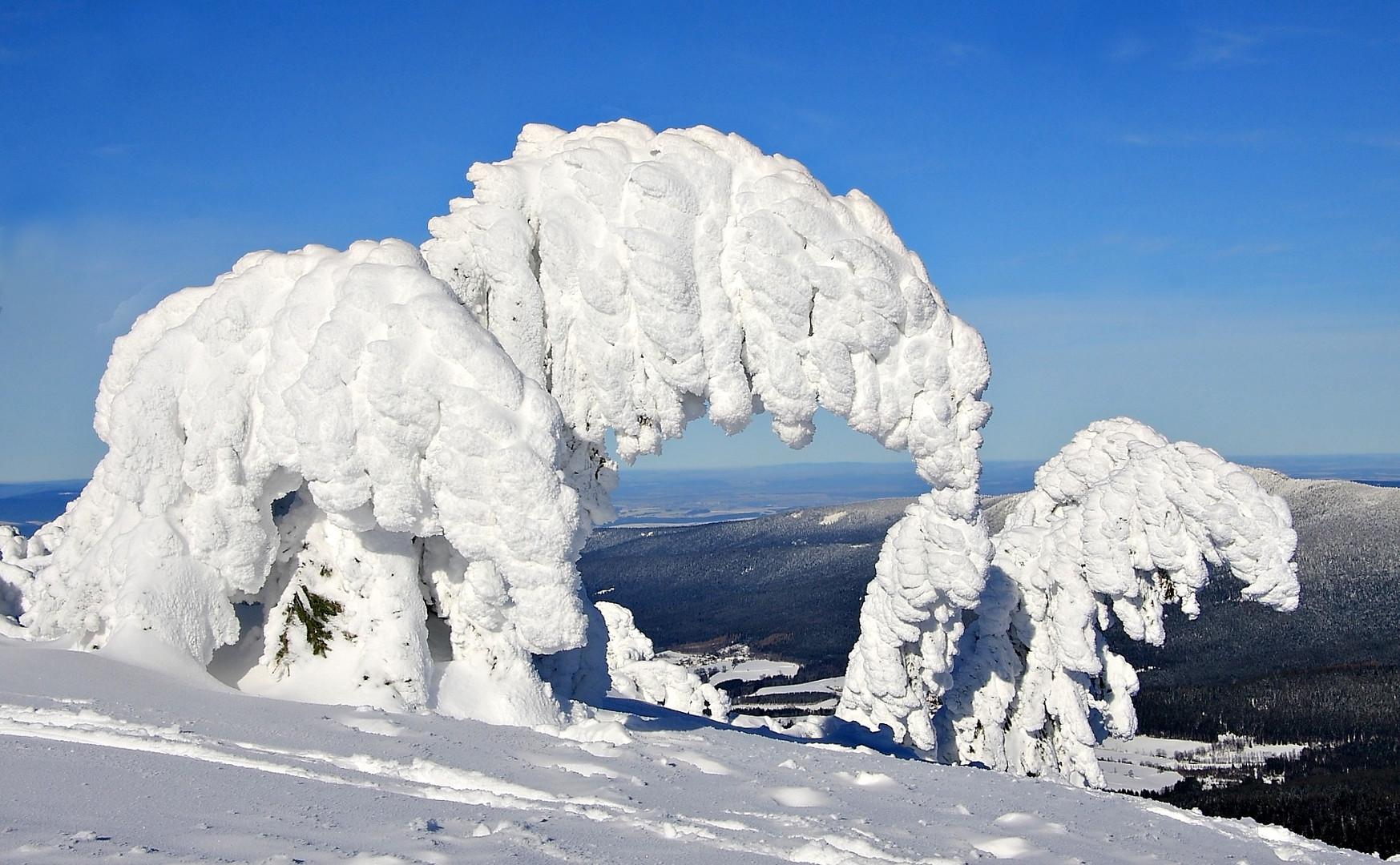 Winterkunstwerke