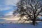 """ Winterlandschaft  ""  ( 1 )"