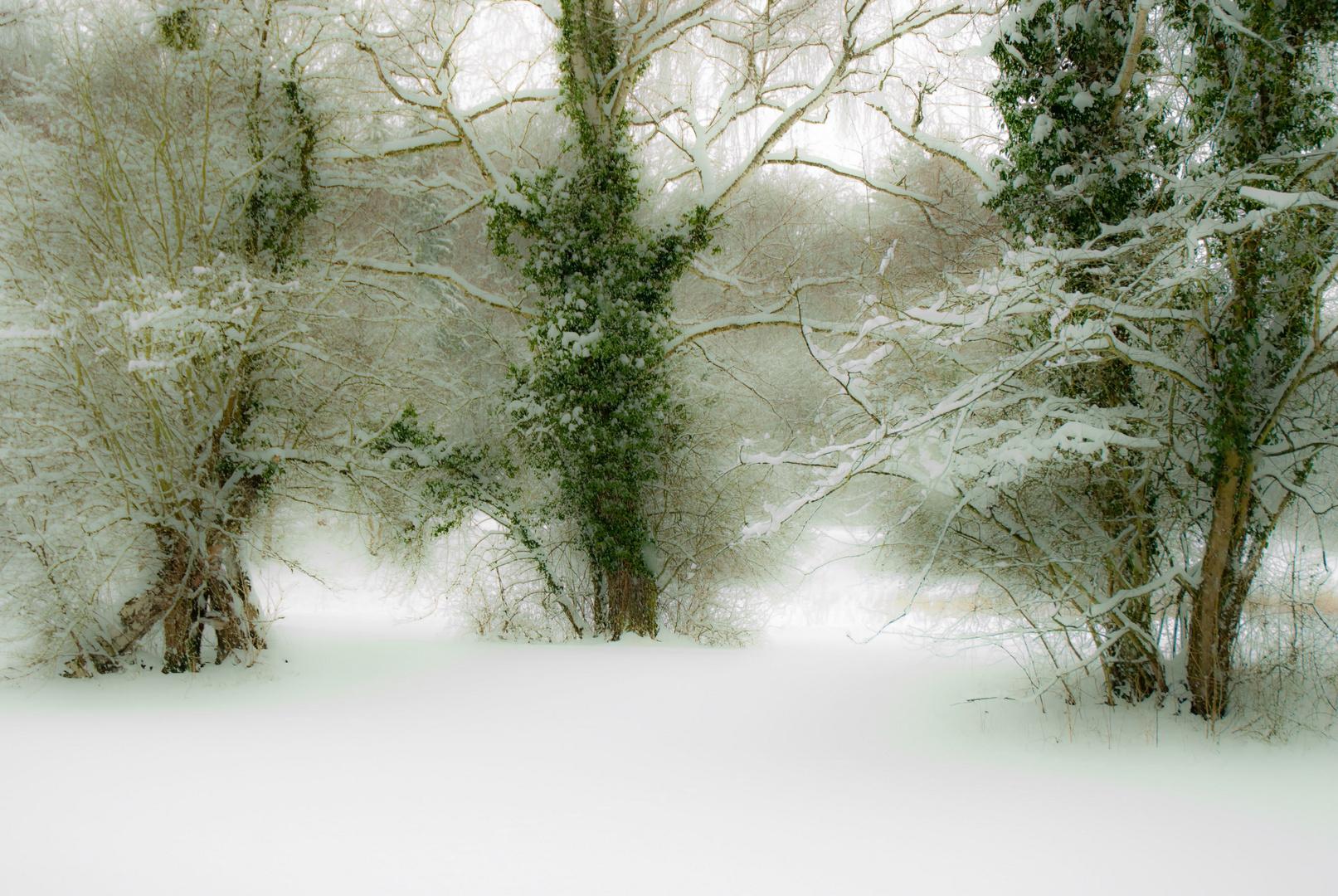 Winterlandschaft-1_2010