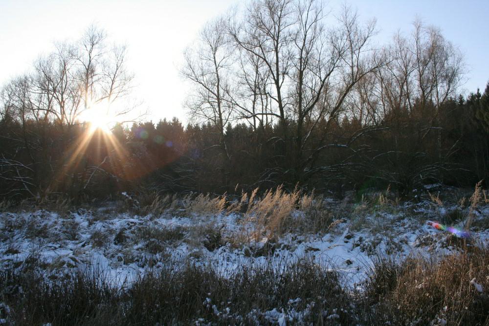 Winterlandschaft 2
