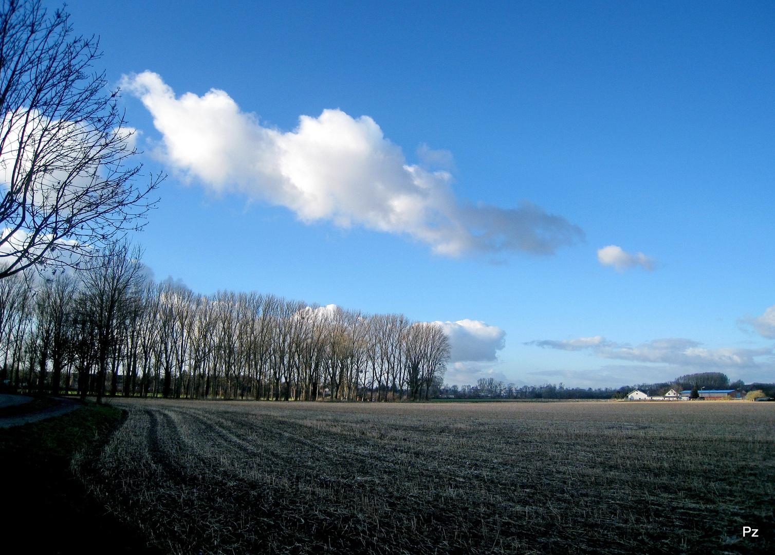 Winterlandschaft 2013 ...