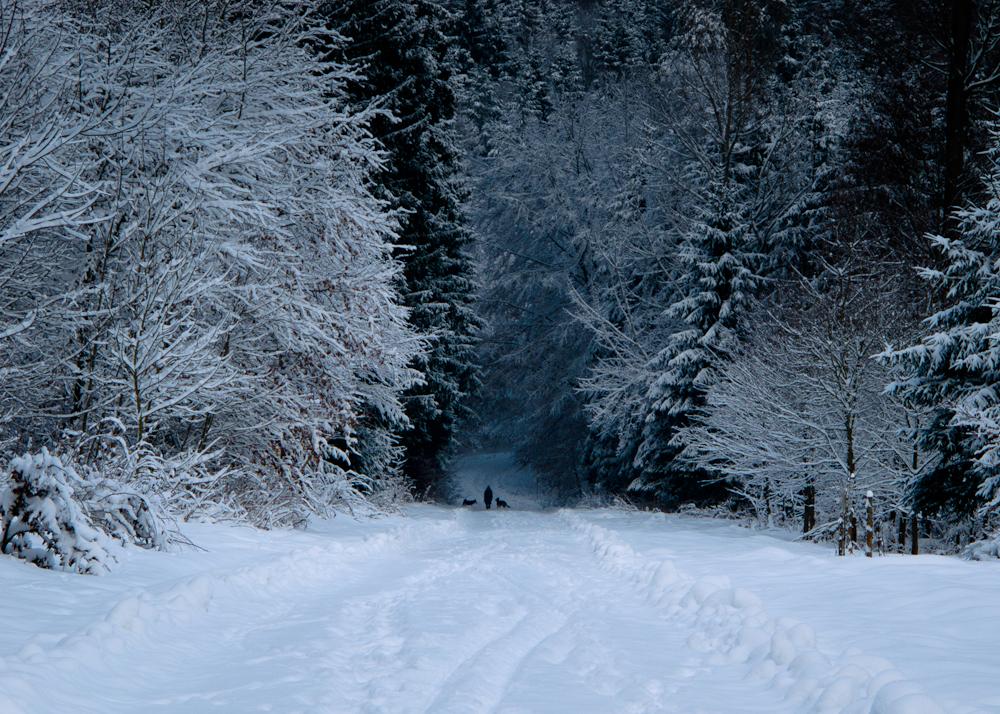 Winterlandschaft (8)