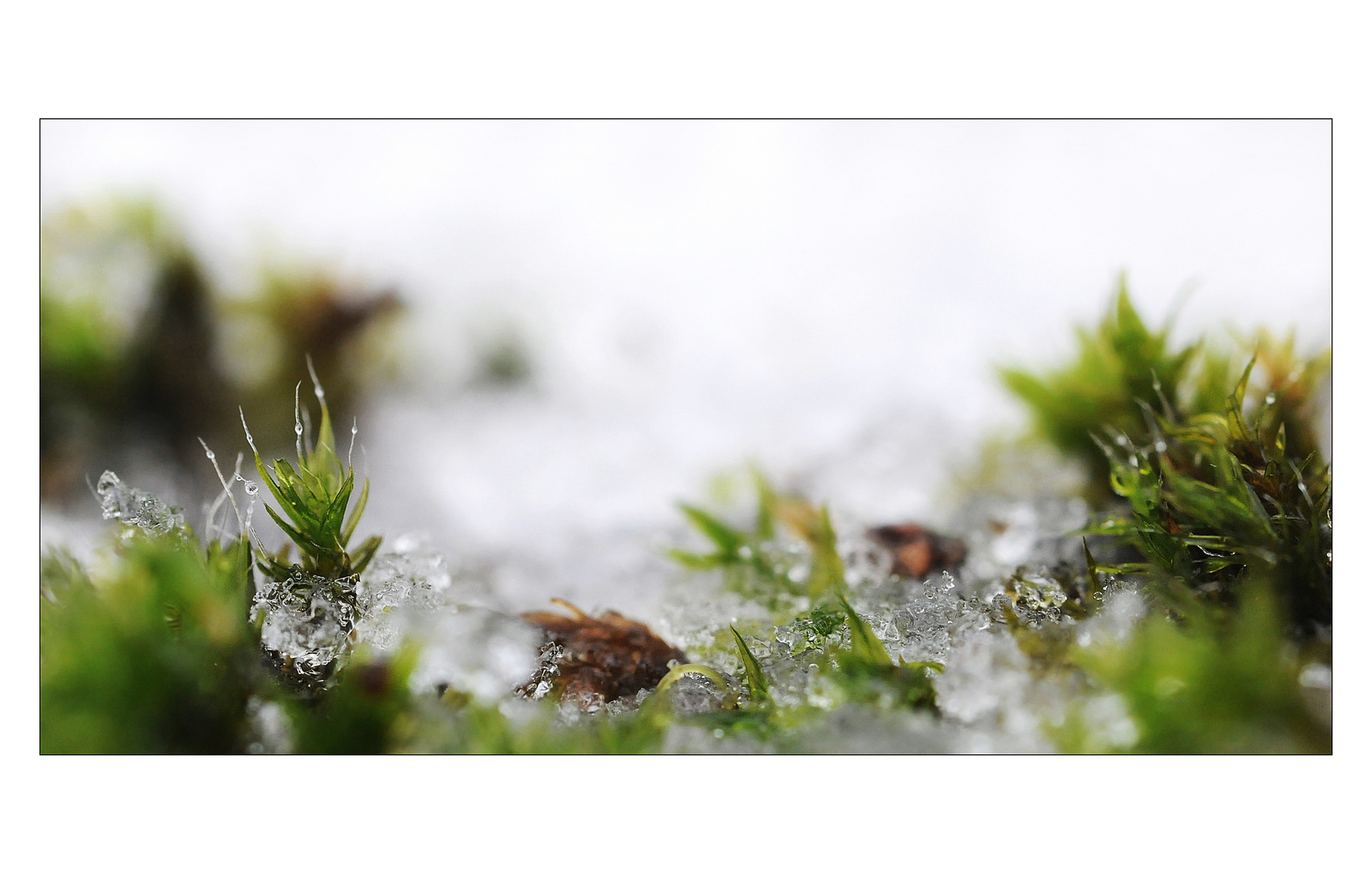 -Winterlandschaft-