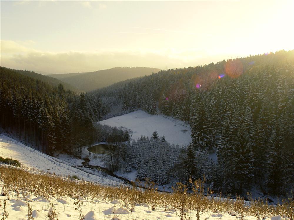 Winterlandschaft bei Großbreitenbach