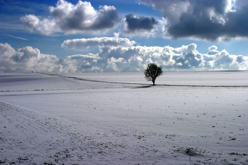 Winterlandschaft bei Kirchheimbolanden