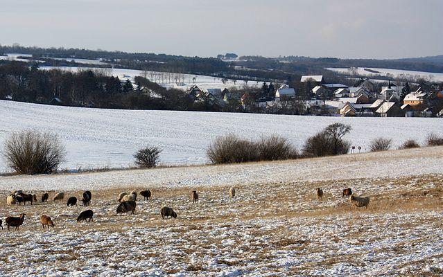 Winterlandschaft bei Mühlberg in Thüringen