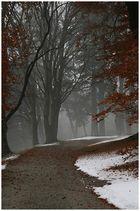 Winterlandschaft beim Schloss Amrass