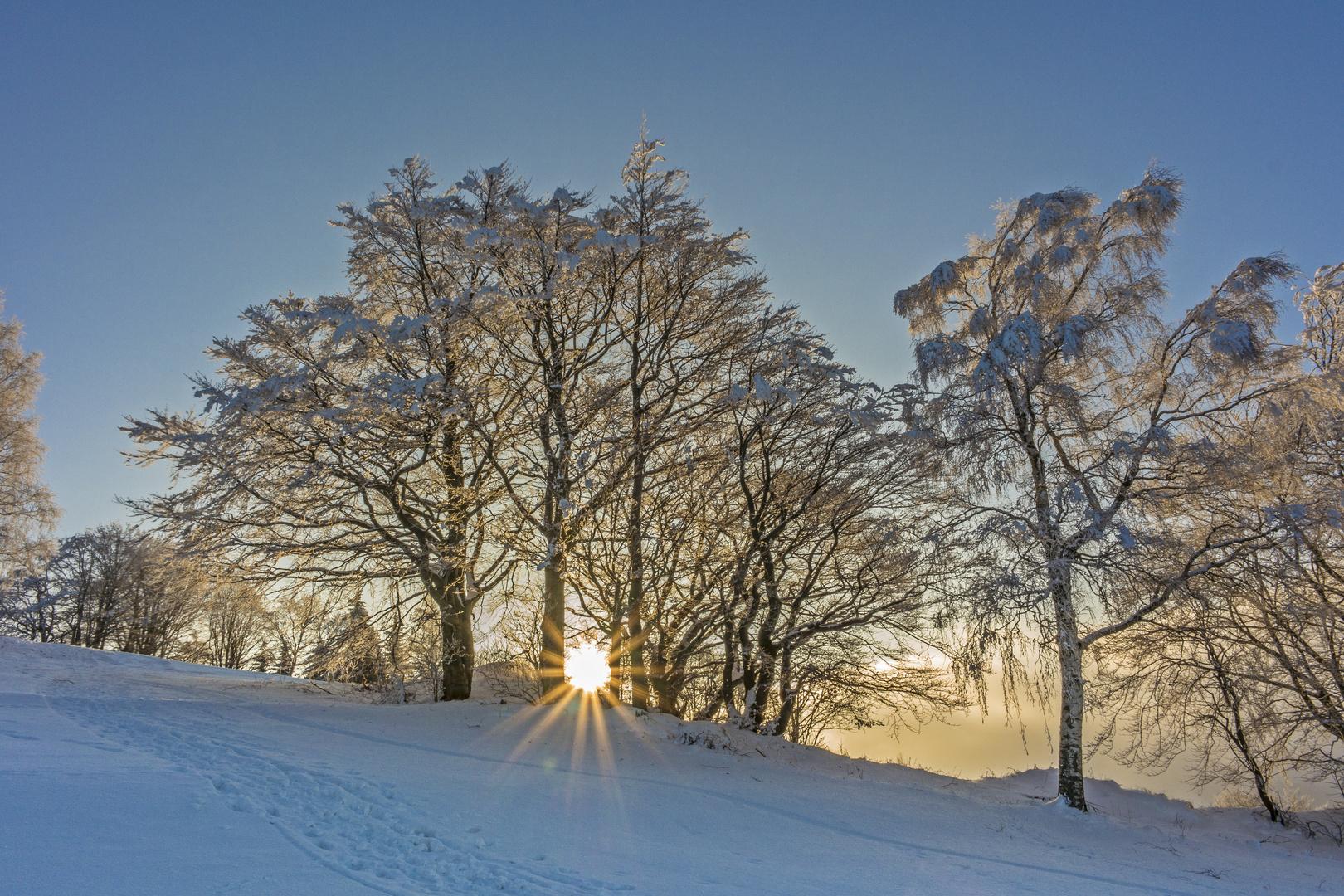 winterlandschaft foto amp bild jahreszeiten winter