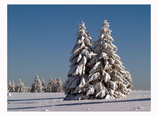 ~Winterlandschaft~
