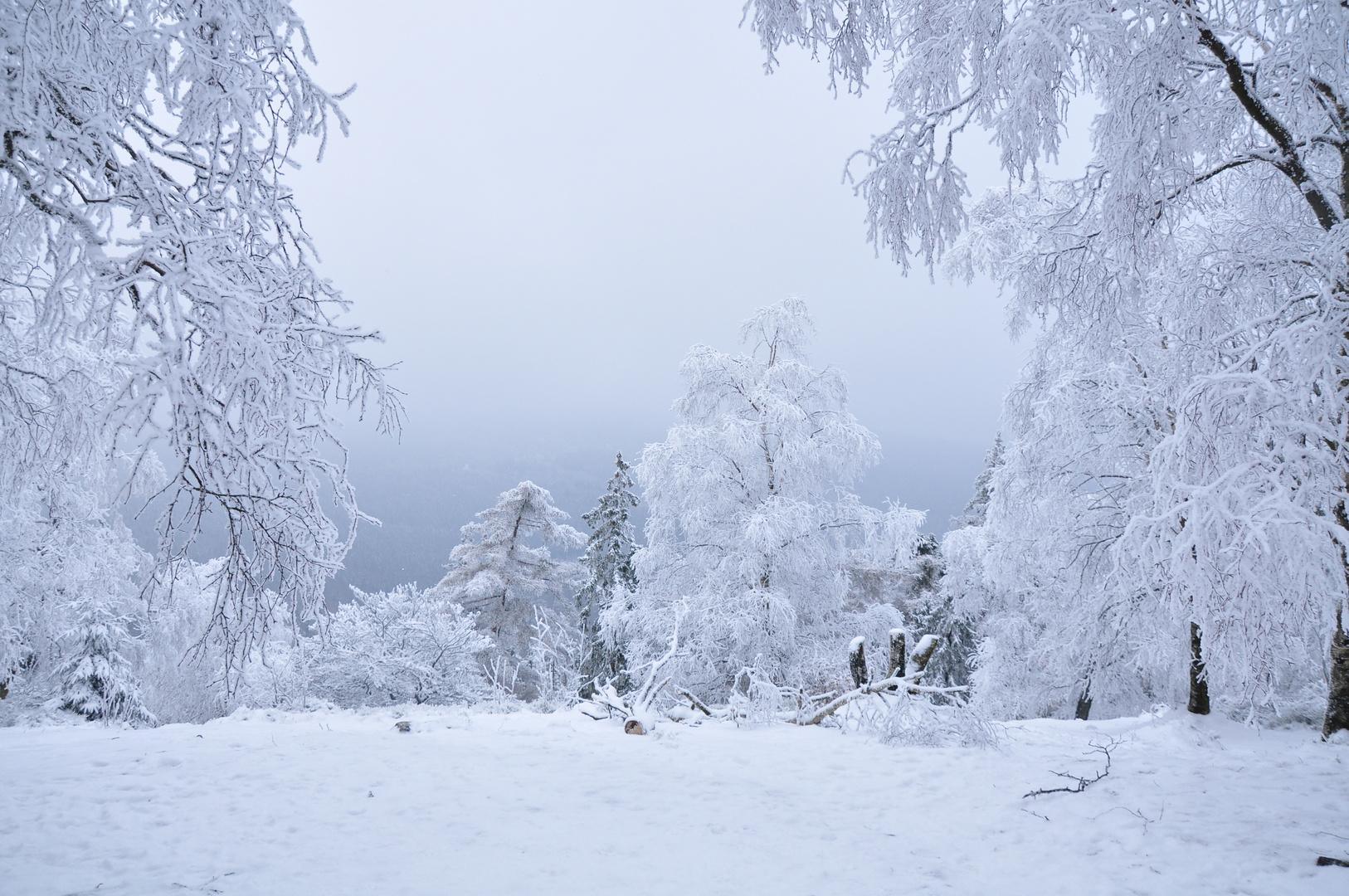 winterlandschaft foto amp bild jahreszeiten winter natur