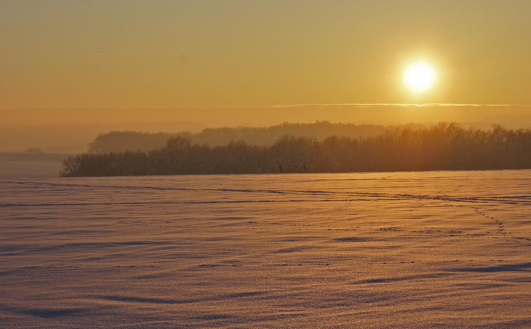 Winterlandschaft im Abendlicht