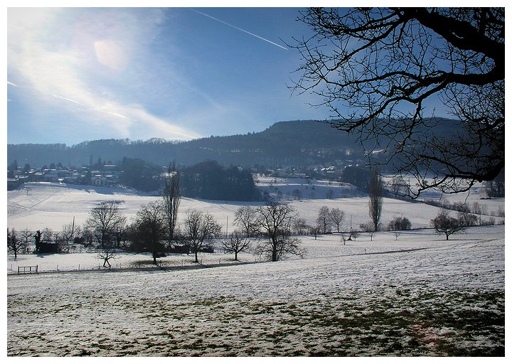 Winterlandschaft im Basel-Land