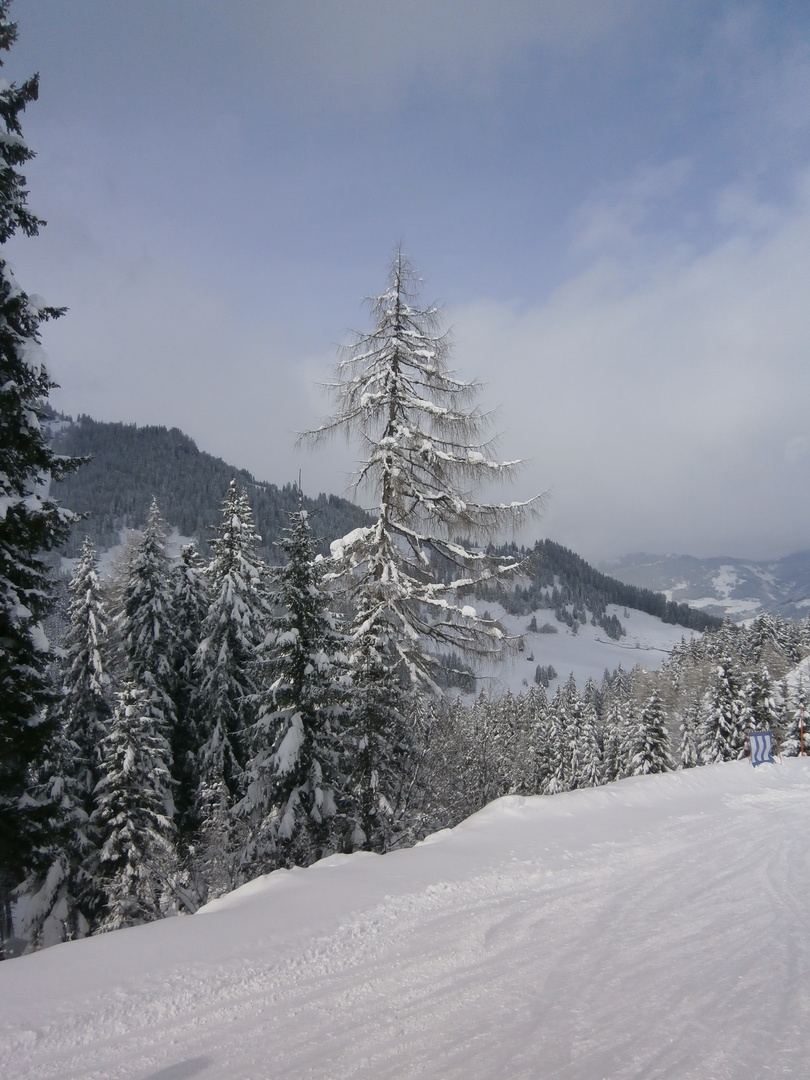 Winterlandschaft im Frühling