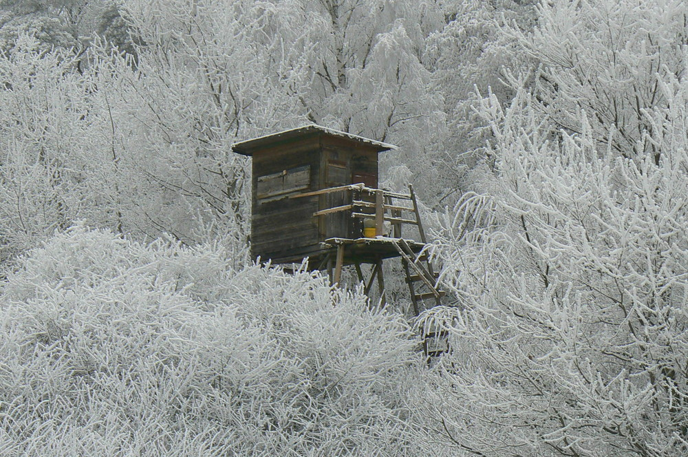 Winterlandschaft im Kaesbachtal
