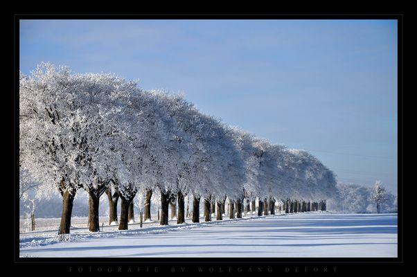 Winterlandschaft im Norden