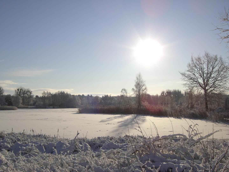 Winterlandschaft im Oderbruch