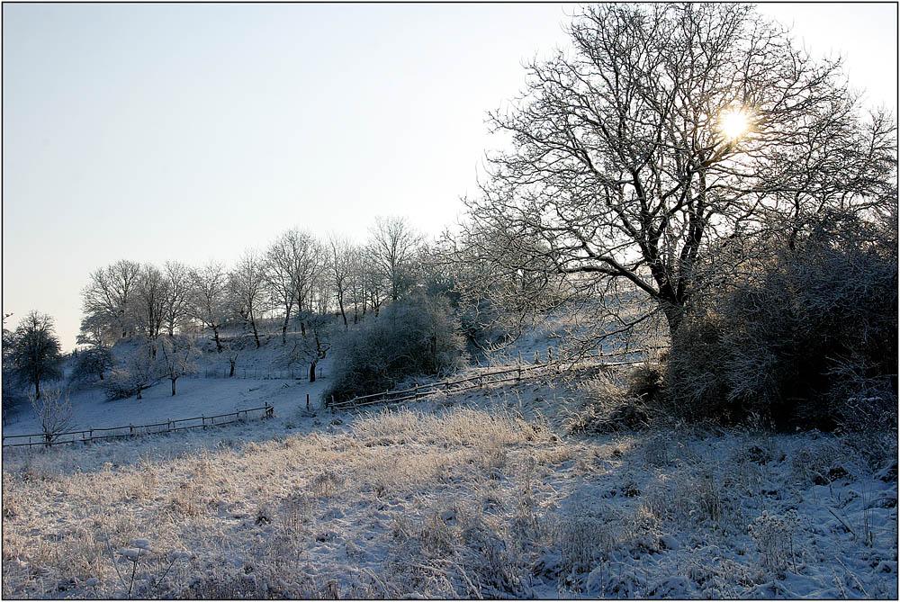 Winterlandschaft im Rheinland