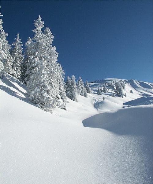 Winterlandschaft  in den Kitzbühler Alpen-Schitour auf den Rauber