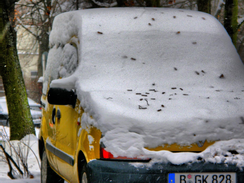 Winterlandschaft in der Großstadt