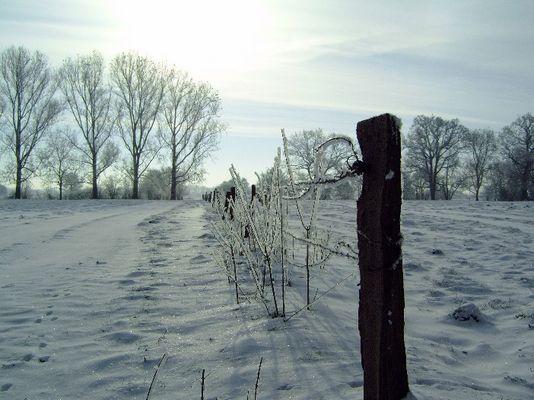 Winterlandschaft in Friesland