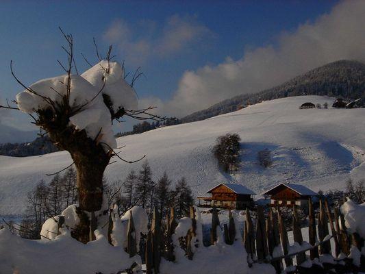 Winterlandschaft in Süditirol