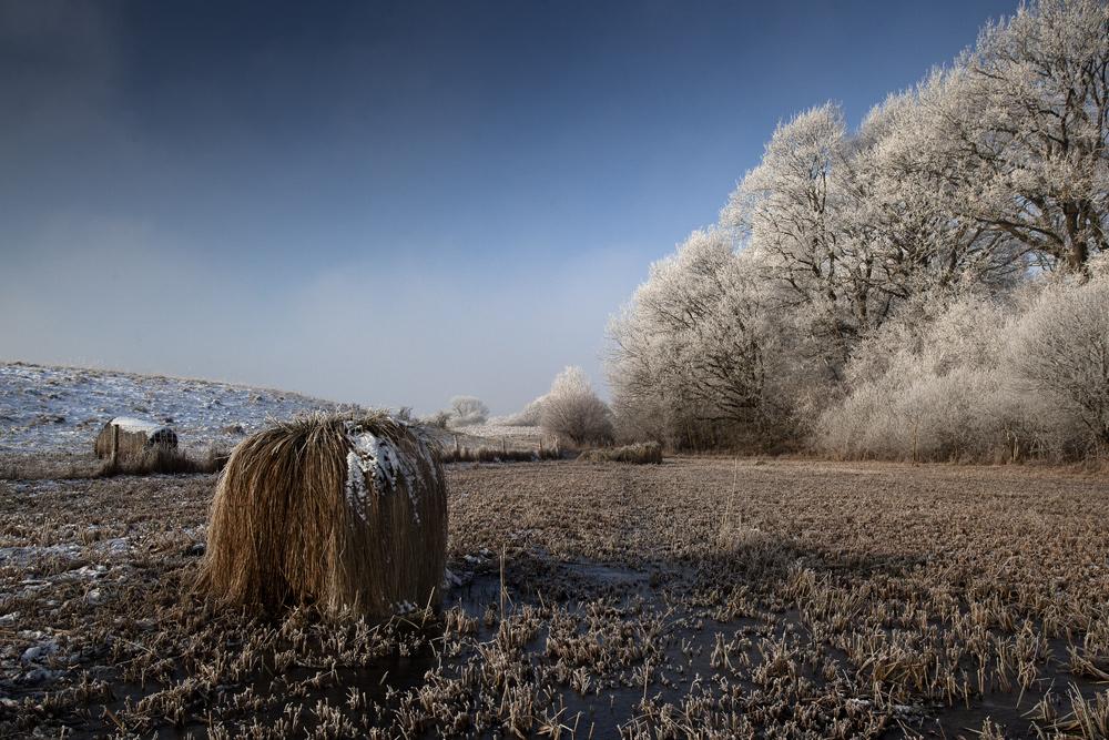 Winterlandschaft irgendwo in Mecklenburg-Vorpommern