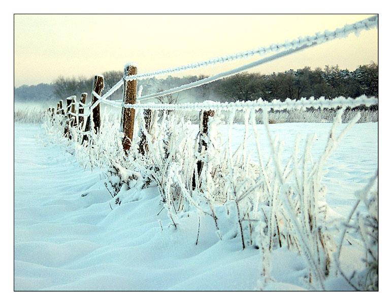 Winterlandschaft IV