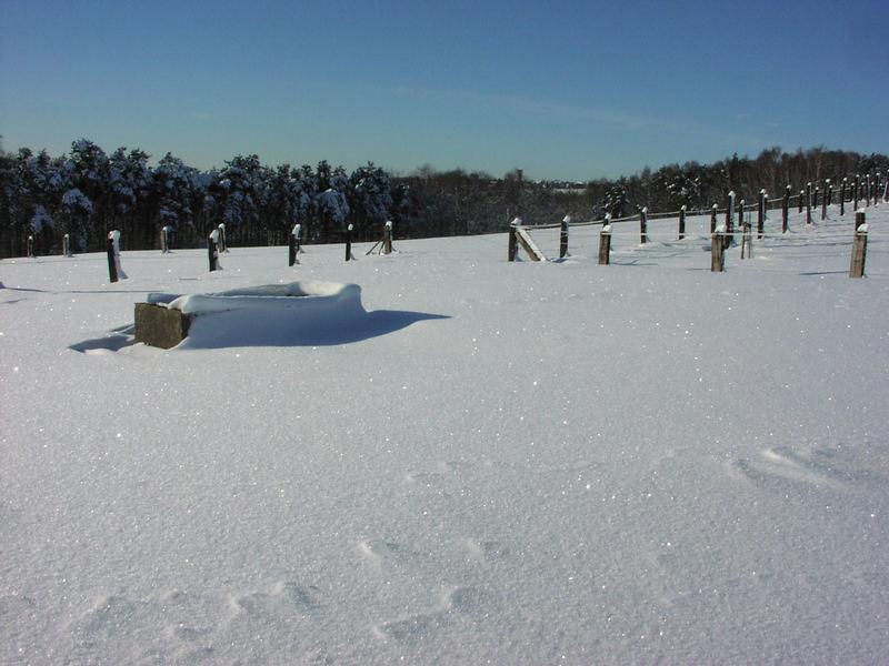 Winterlandschaft Kleiner Donnersberg 1
