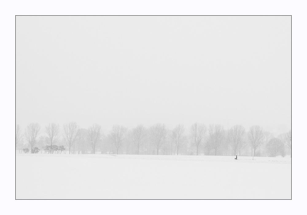 Winterlandschaft mit Mann und Hund