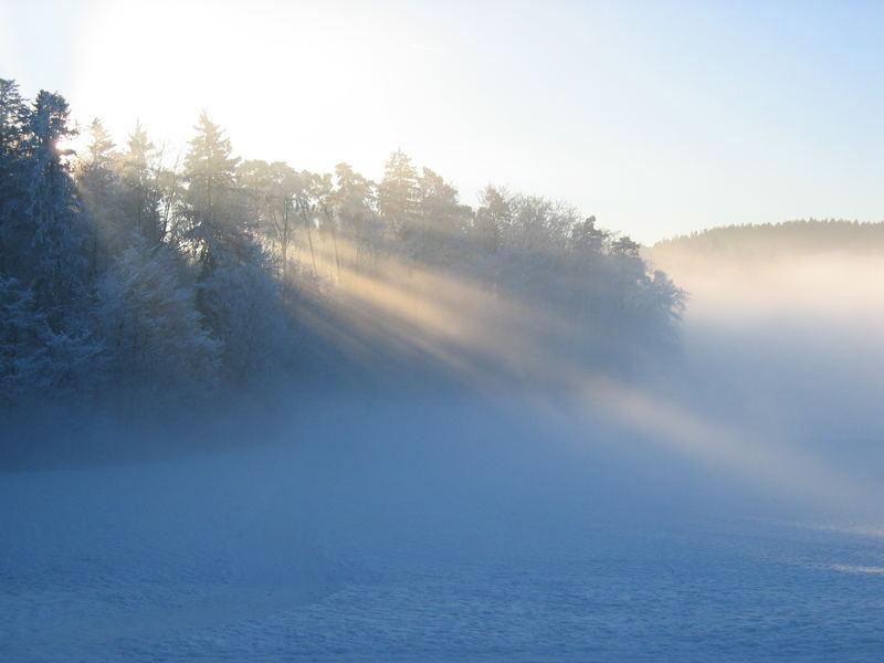 Winterlandschaft mit Morgennebel - Schweiz