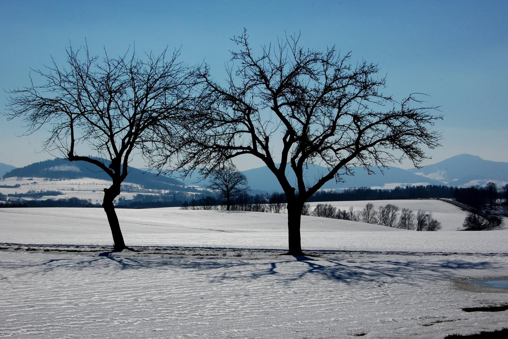Winterlandschaft mit Zittauer Gebirge