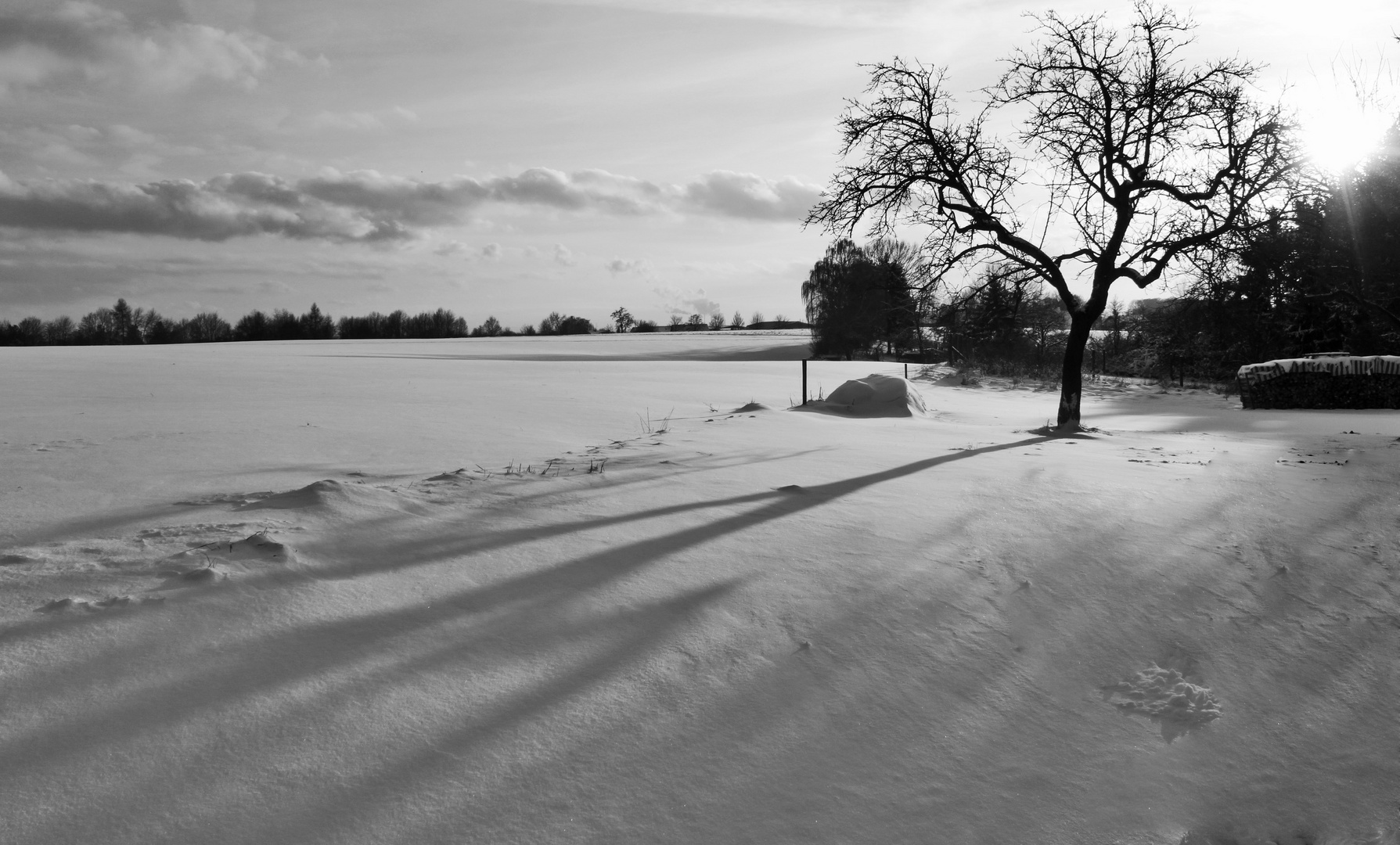 Winterlandschaft Neuberg