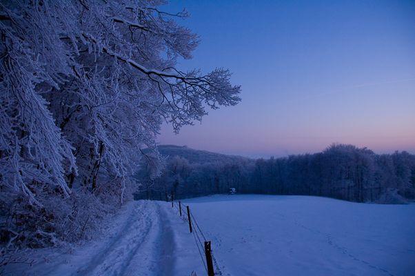 Winterlandschaft Teutoburger Wald