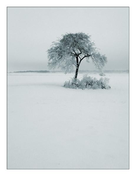 Winterlandschaft VI