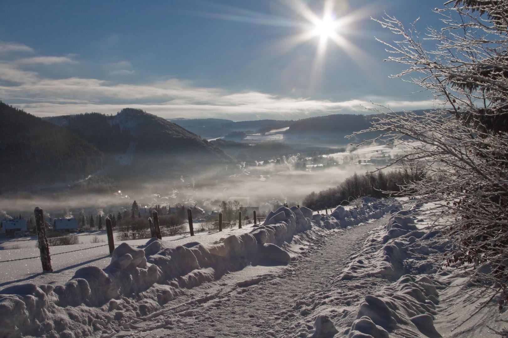Winterlandschaft Willingen