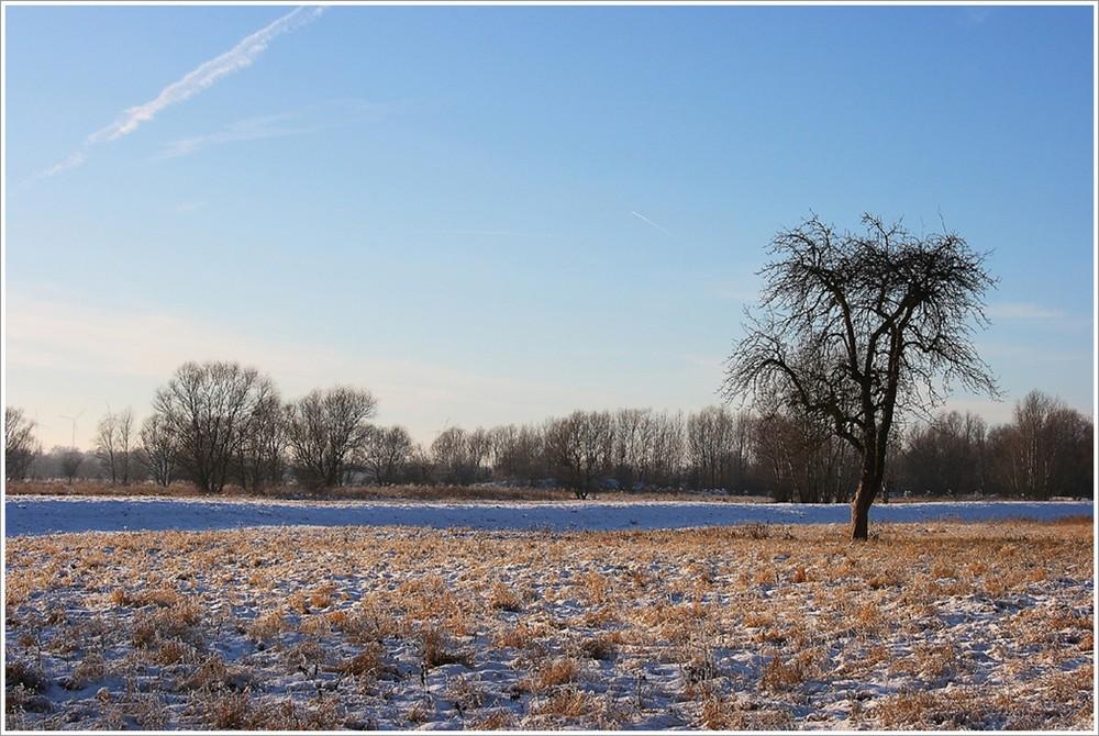 Winterlandschaft (Winterimpressionen 5)