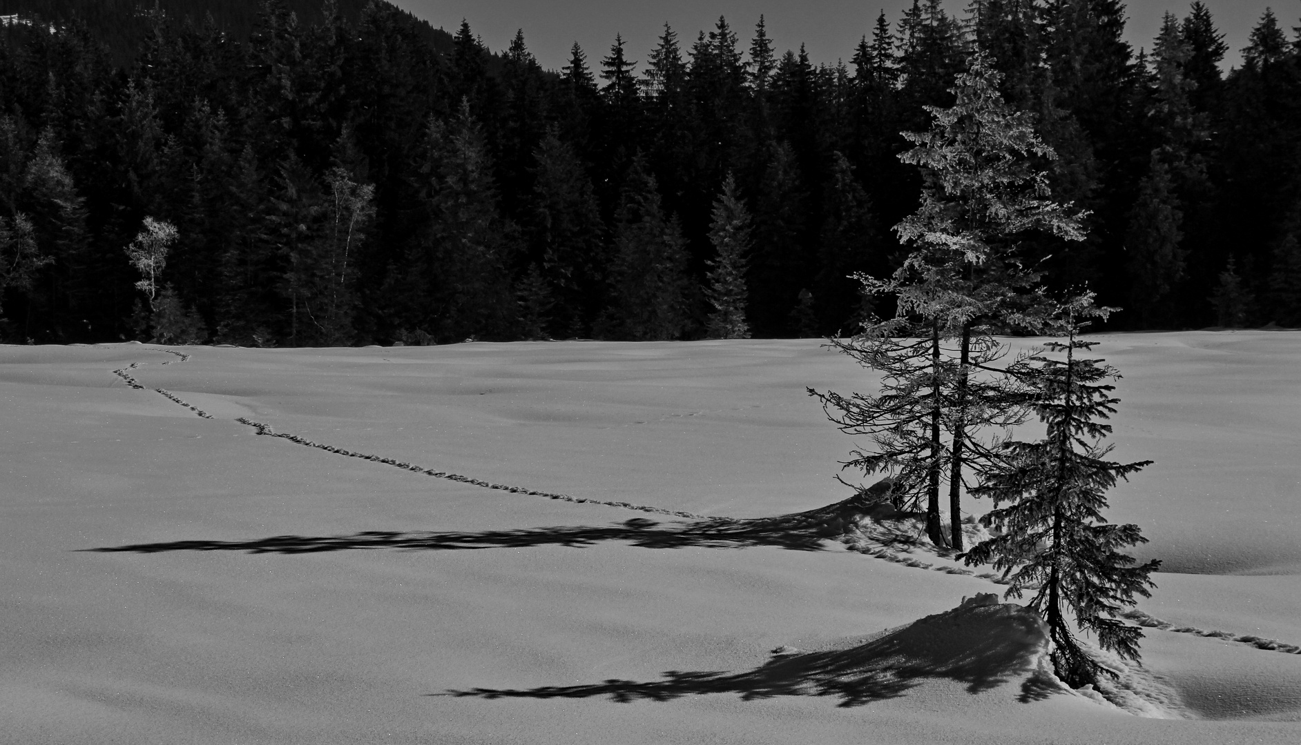 Winterlandschaft_2