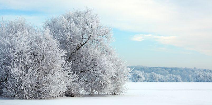 Winterlandschaft7