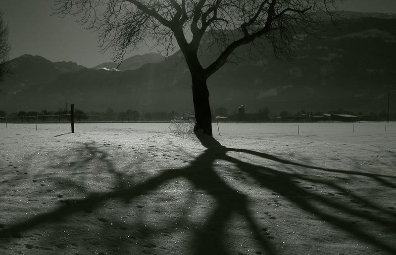 winterLand...VIII