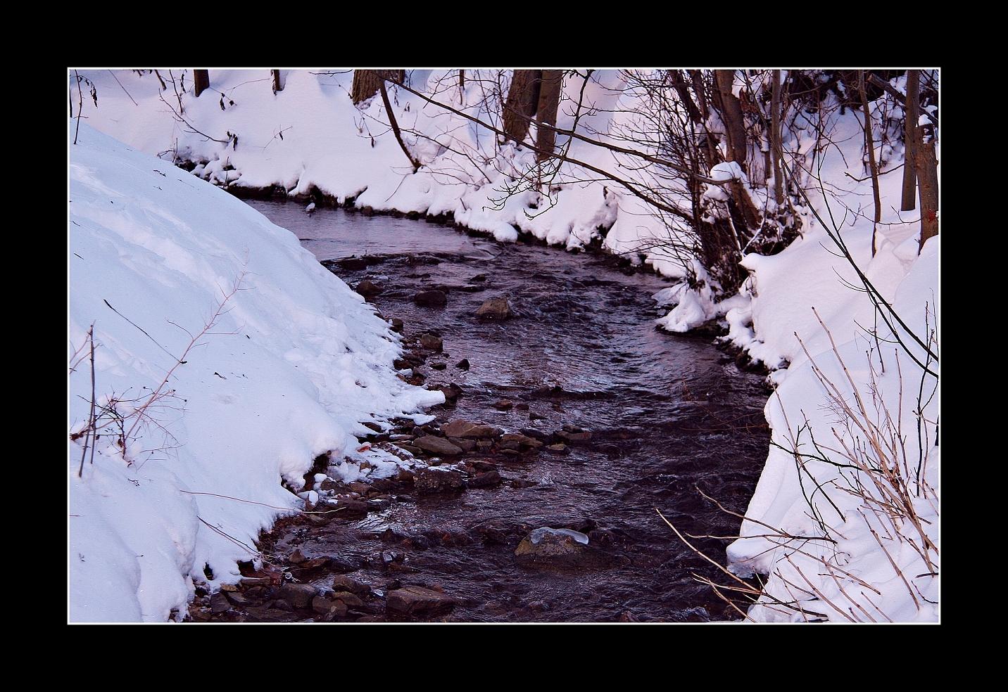 Winterleben 1