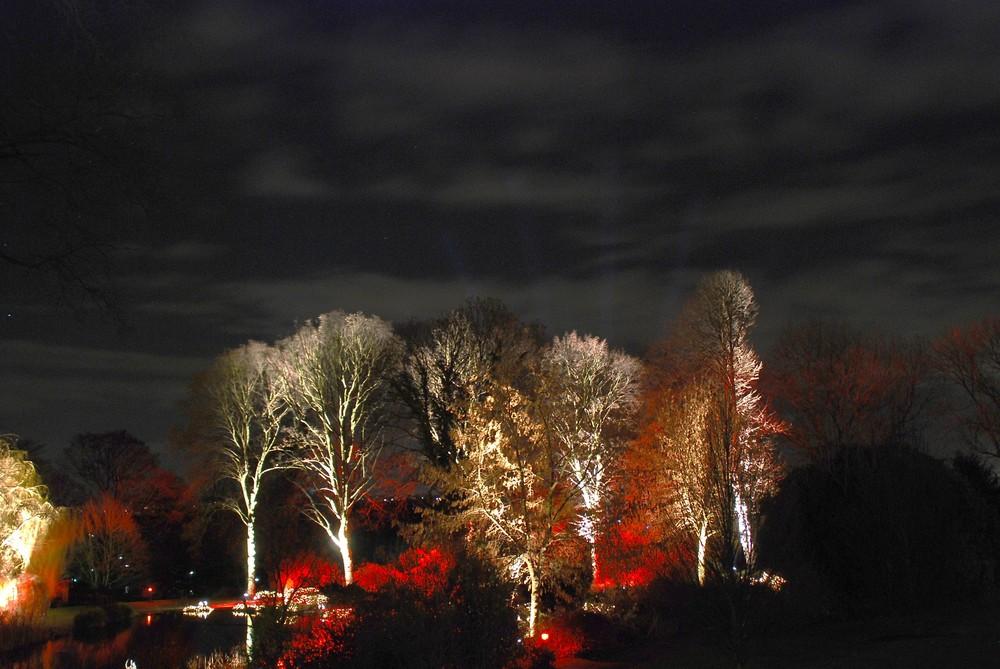 Winterleuchten im Westfalenpark