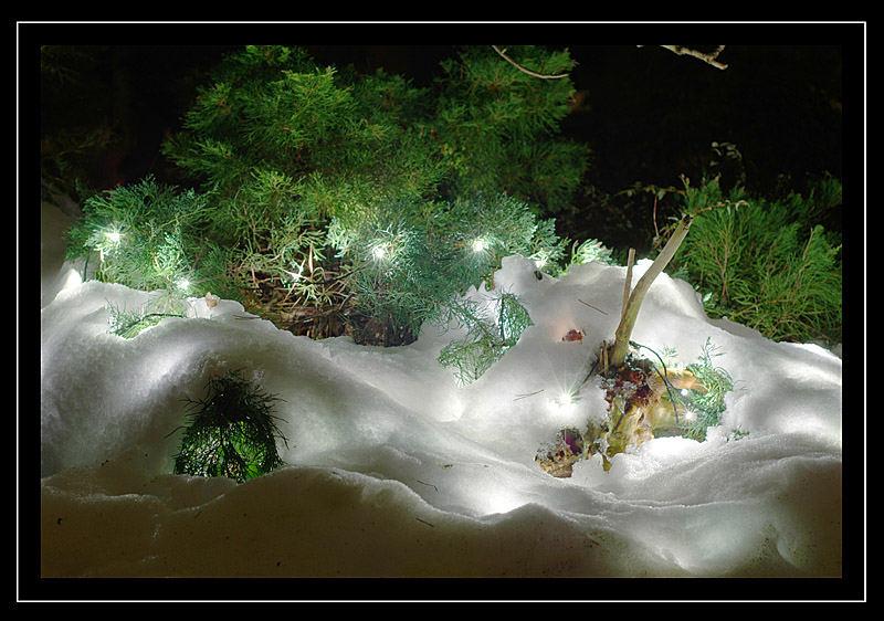 Winterleuchten IV