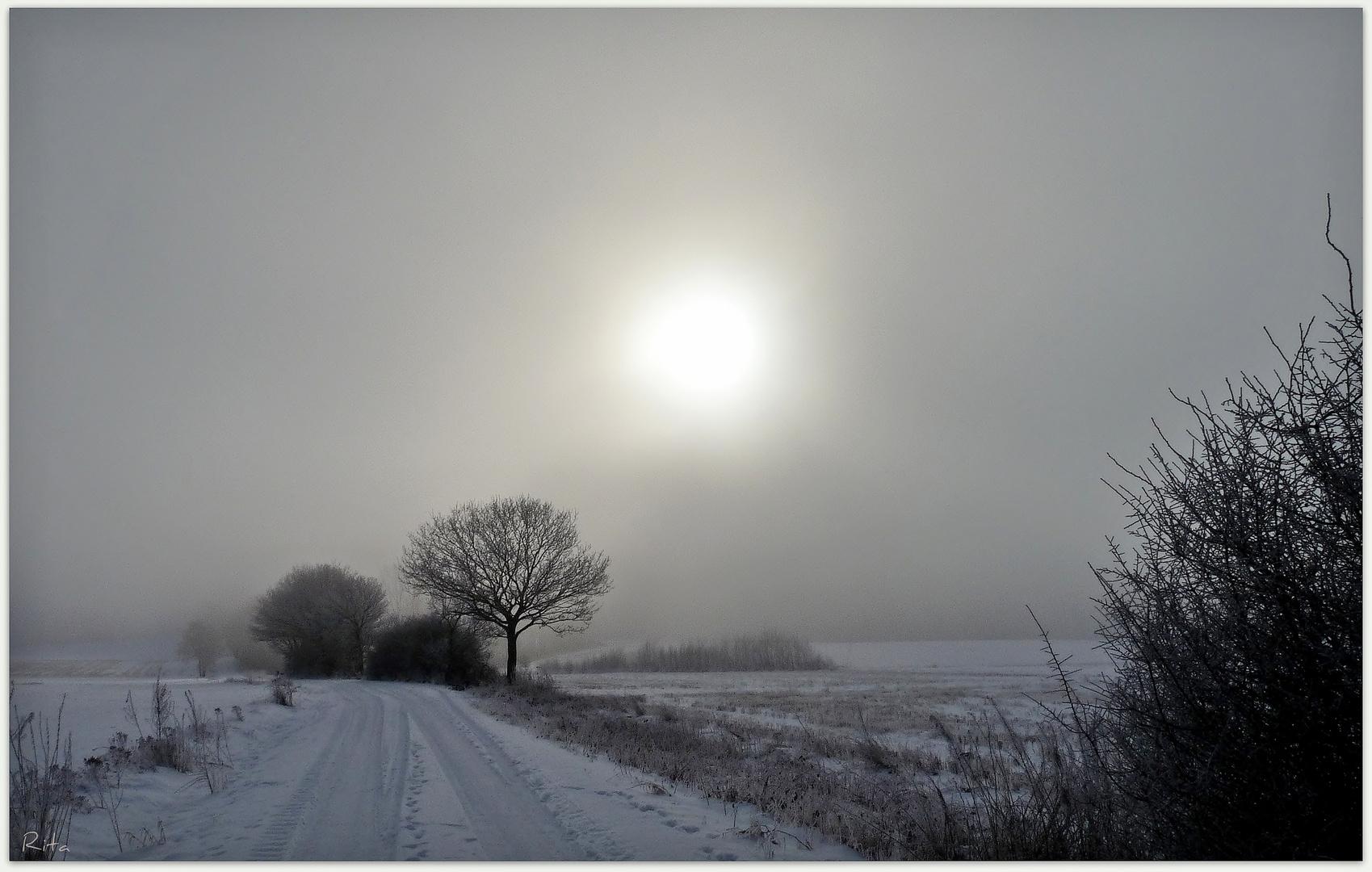 winterlich (3)...