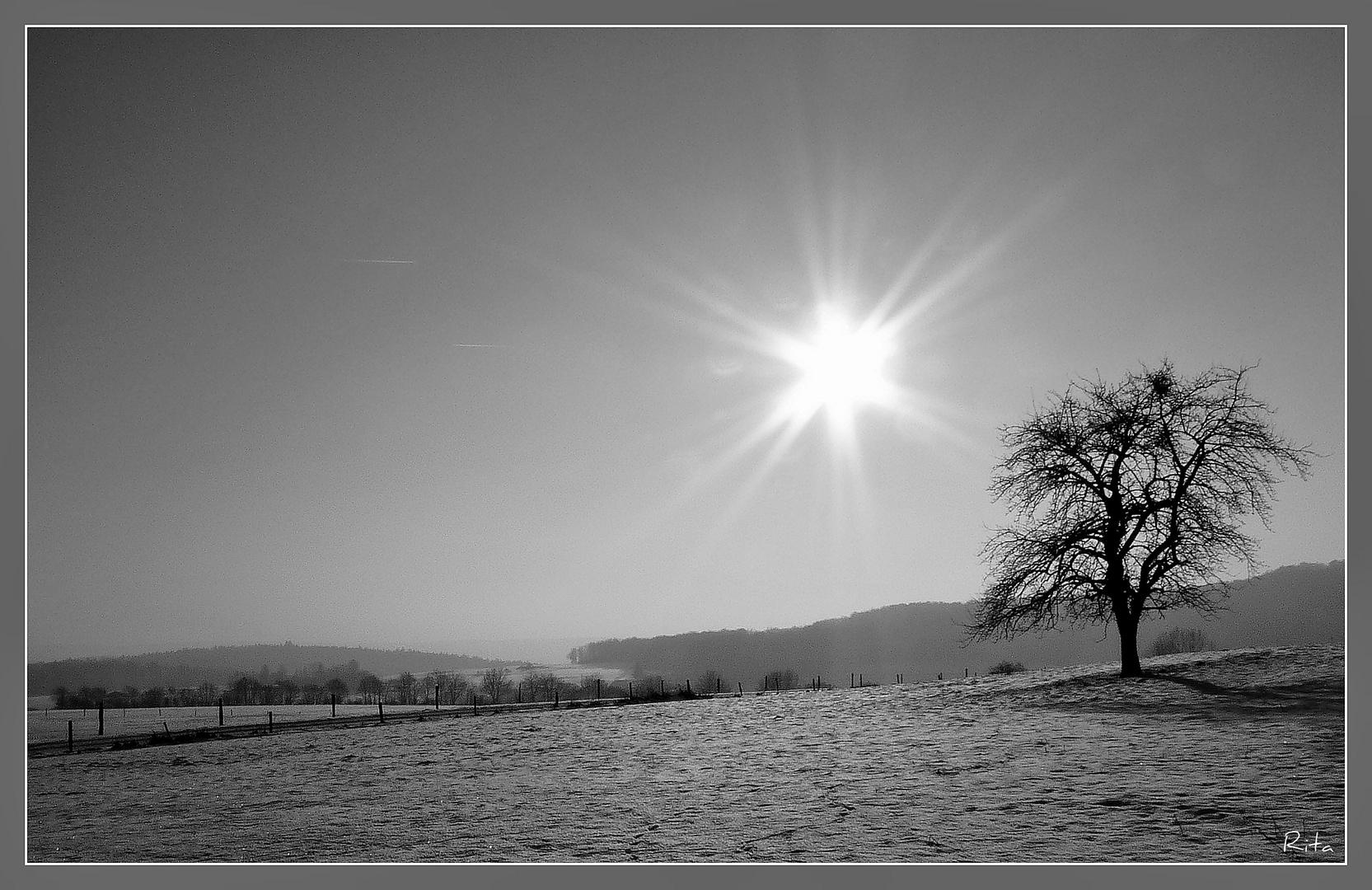 winterlich (4)...
