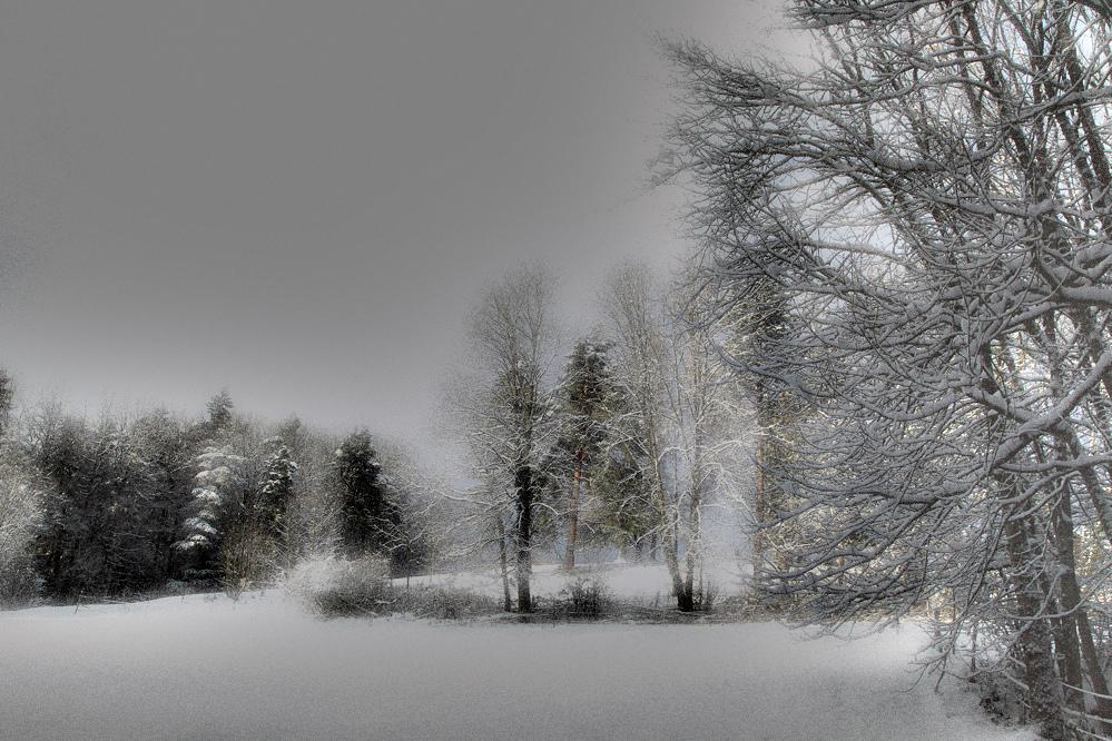 Winterlich ..,,,