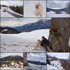 Winterlich über Wamberg