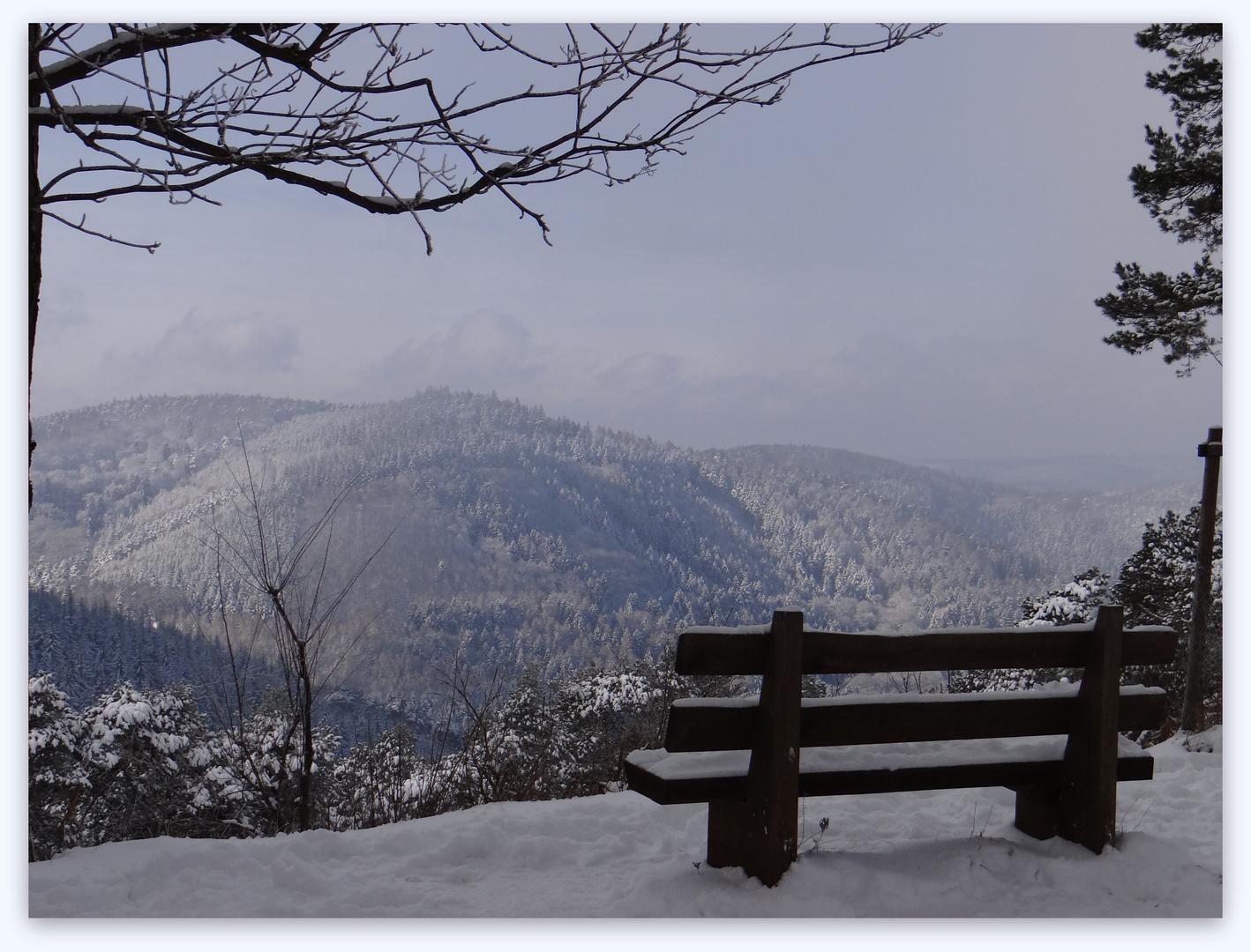Winterliche Aussichten 1